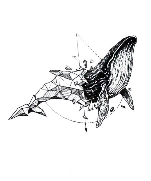 tatuaje temporal ballena humbpack